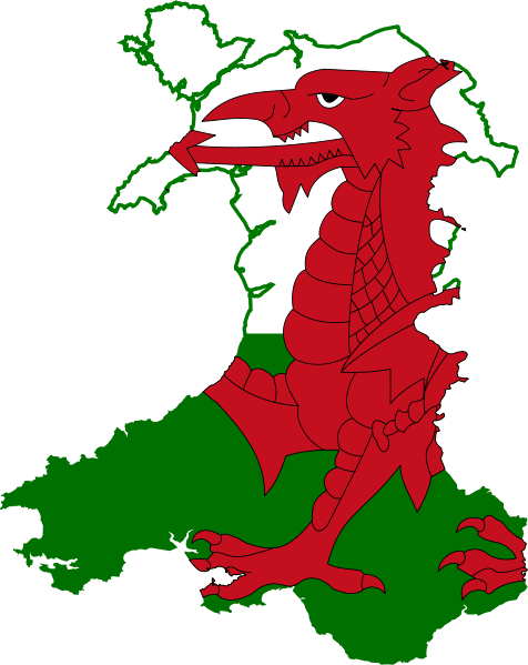 Euro 2021: Wales Team Guide